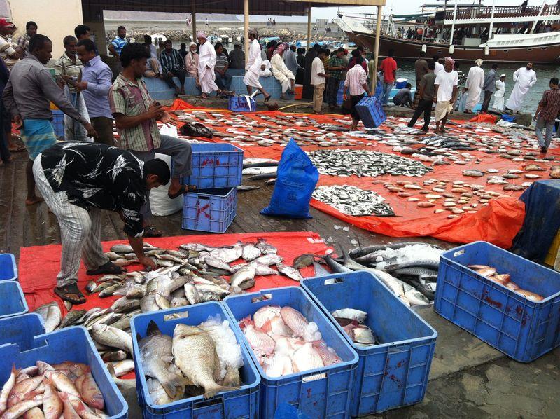 Dibba_Fish_Market_5