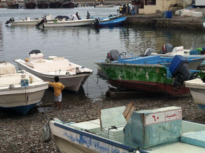 Dibba_Fish_Market_8