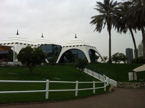 Dubai Desert Classic _4