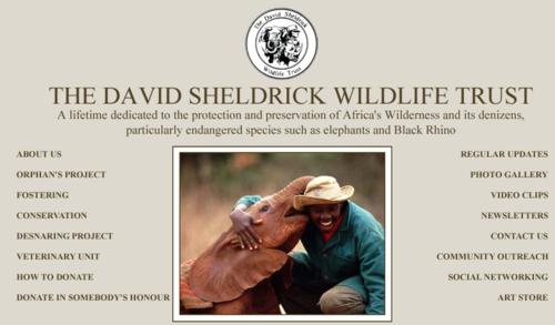Scheldrick_Wildlife_Trust_8