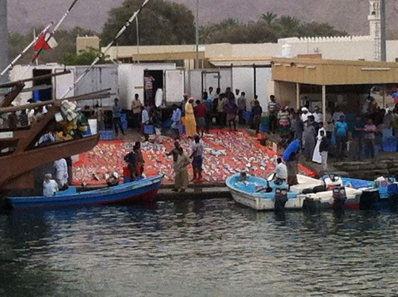Dibba_Fish_Market_2