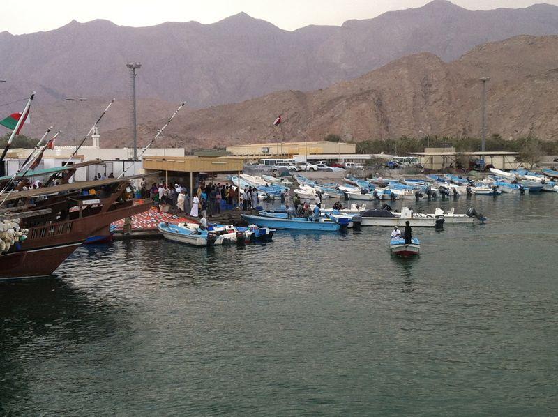 Dibba_Fish_Market_3